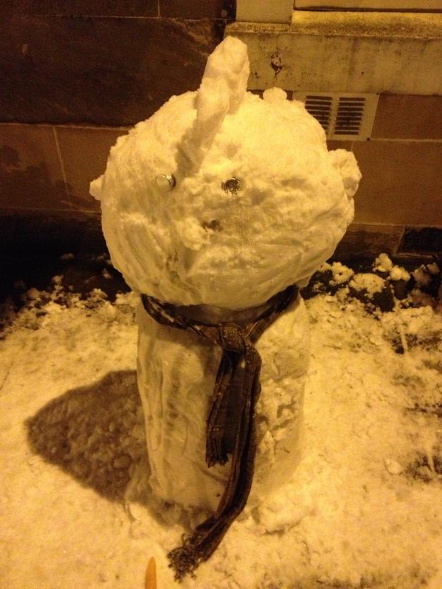 Mohawk snow dude