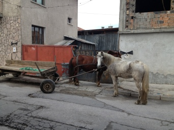 Horse and cart are still in use